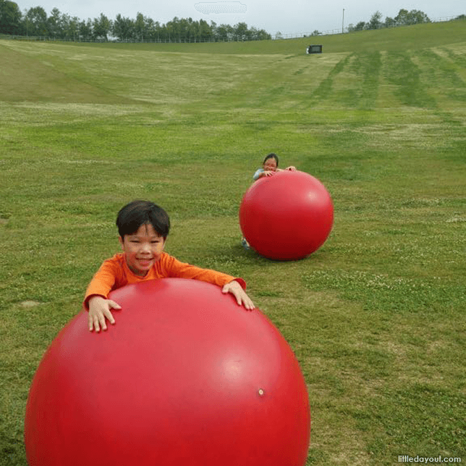 Red Balls at the Hillside Park