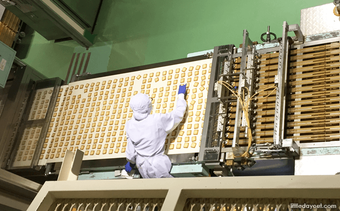 Shiroi Koibito biscuits on the production line