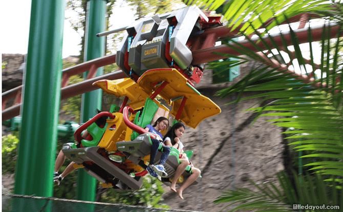 Canopy Flyer Ride