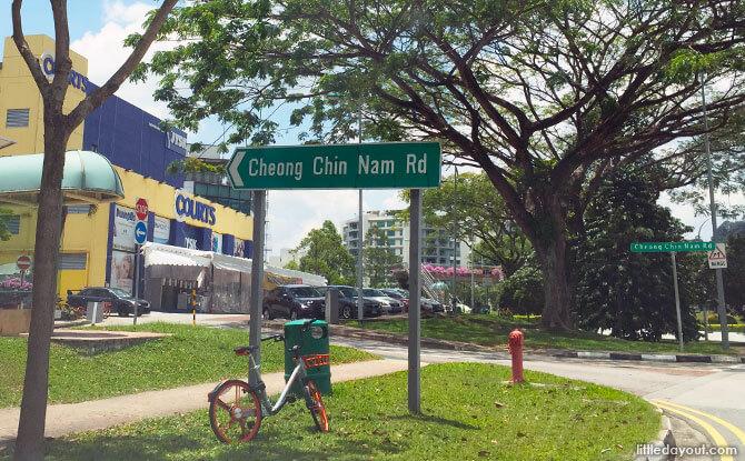 Cheong Chin Nam Road, Upper Bukit Timah