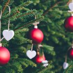 9 Places To Buy A Live Christmas Tree In Singapore
