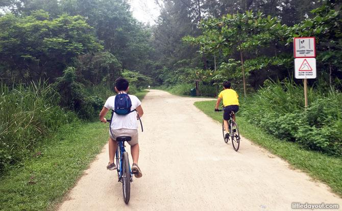Cycling at Coney Island Park