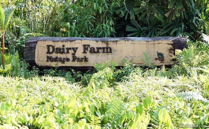 Dairy Farm Nature Park Entrance