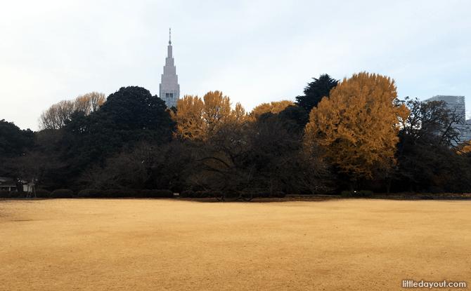 Wide lawns at the English Landscape Garden, Shinjuku Gyoen National Garden