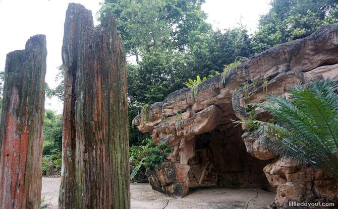 Trees of Stone at Evolution Garden entrance, Singapore Botanic Gardens