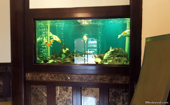 Fish tank at the Prima Tower ground floor