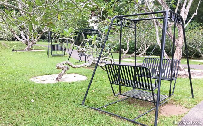 Swings at Frangipani Collection
