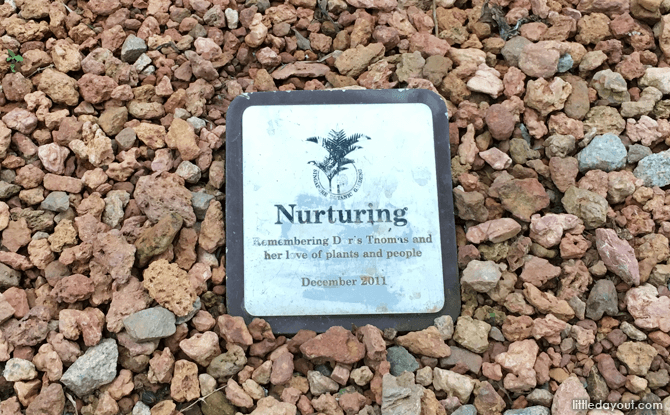 Dedication of the sculpture Nurturing