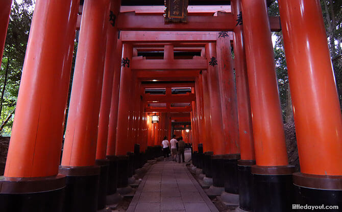 Fushimi Inari Shrine's Torii Gates