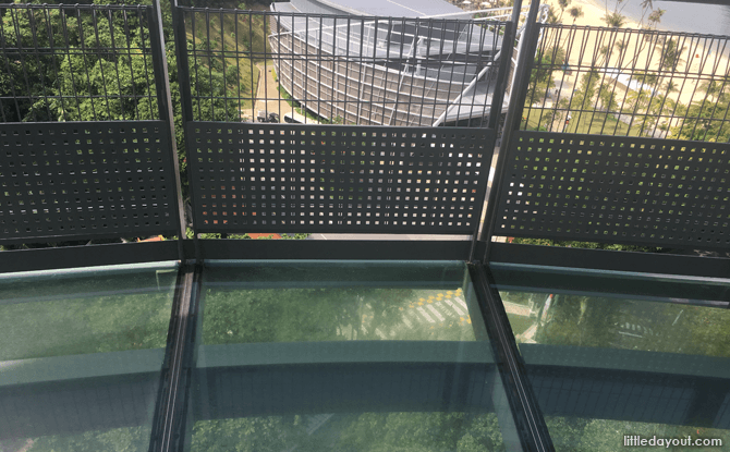 Glass-bottomed Section of Viewing Platform
