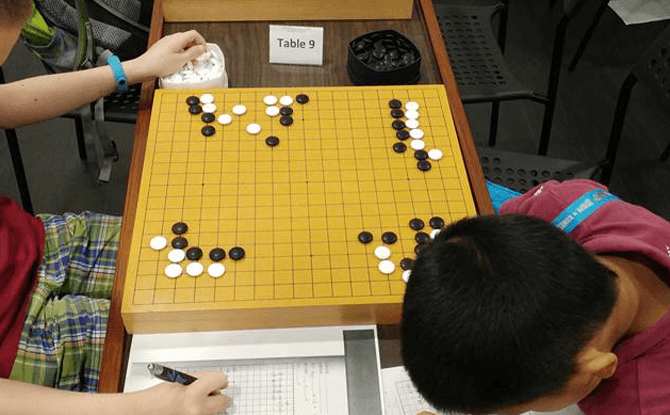 GO (Weiqi) Holiday Camps