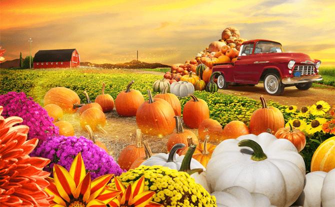Autumn Harvest - Mid-Autumn @ Gardens by the Bay 2017