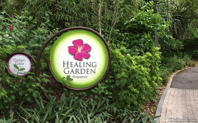 Healing Garden at Singapore Botanic Gardens
