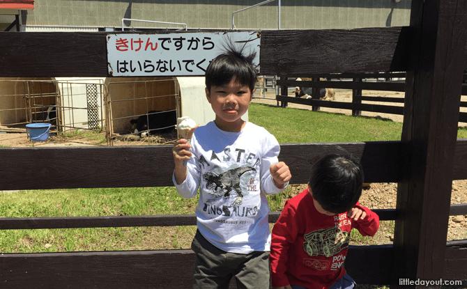 Ice-cream at Sapporo Satoland, Hokkaido