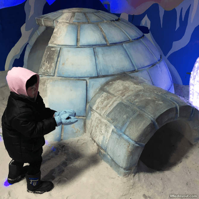 Igloo at Snow City