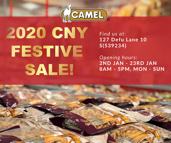 Camel Festive Sale 2020