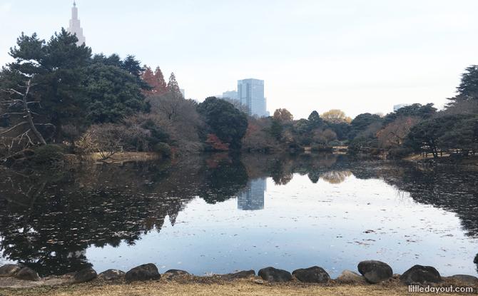 View at Shinjuku Gyoen National Garden
