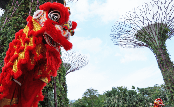 Lion Dances at Gardens by the Bay