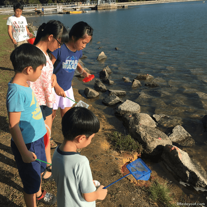 Looking for yabbies at Lower Peirce Reservoir's fishing grounds