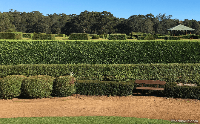 Hedge maze at A Maz'n Margaret River
