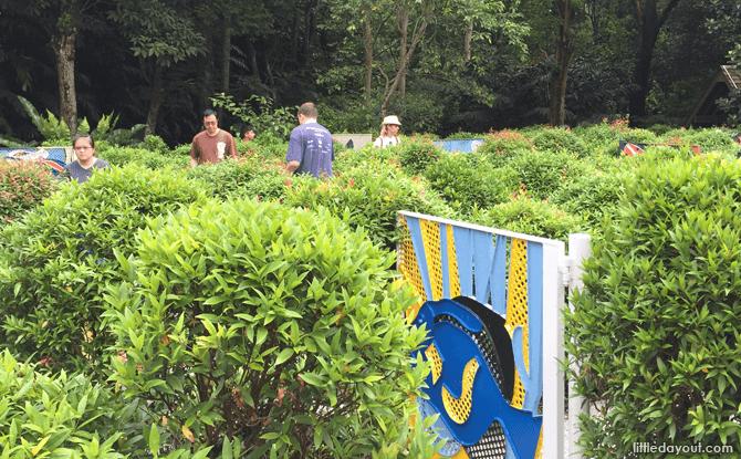 Hedge maze - Things to do at Jacob Ballas Children's Garden