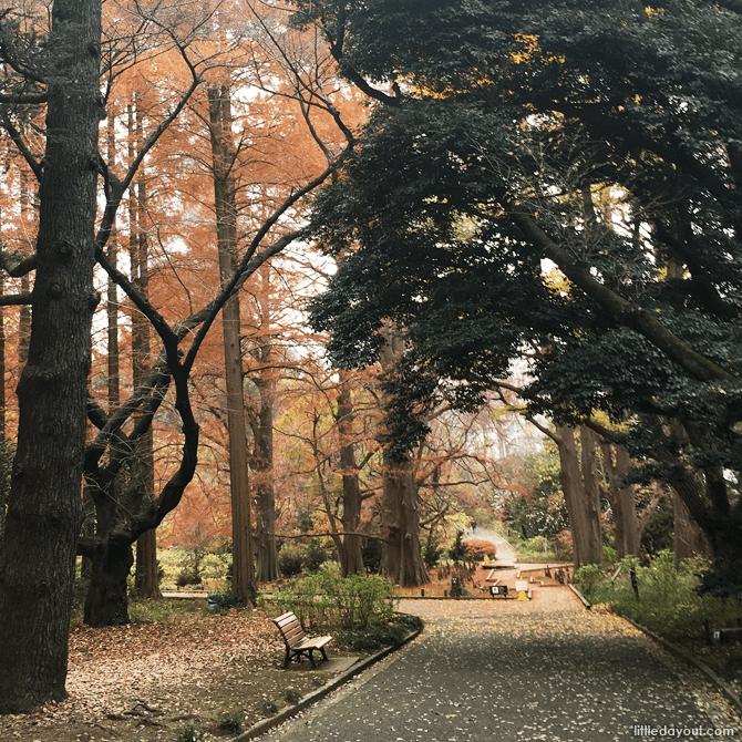 Forested walks at Shinjuku Gyoen