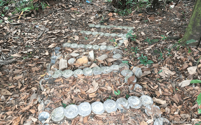 Nature Trail at Kent Ridge Park