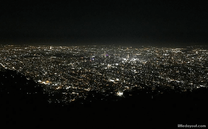 Night view of Sapporo from Mount Moiwa