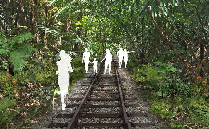 New Nature Trails To Be Rolled Out In Clementi: Old Jurong Line Nature Trail & Clementi Nature Trail