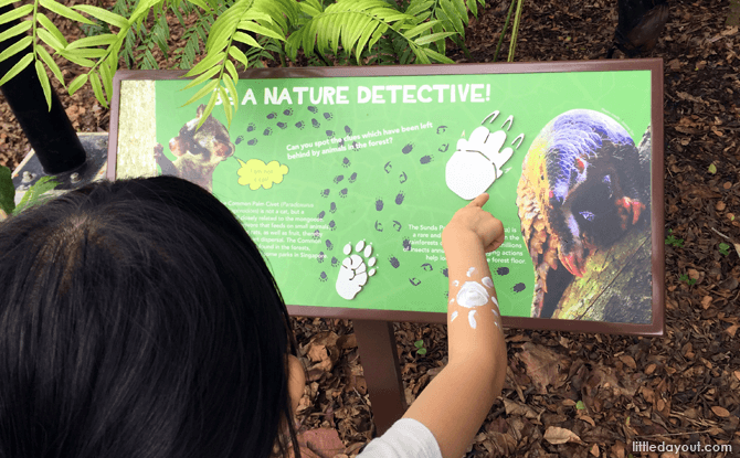Learning from information panels at Jacob Ballas Children's Garden