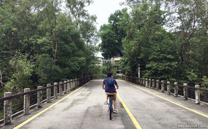 Cycling at Pasir Ris Park