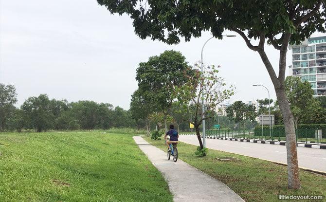 Cycling towards Loyang along Pasir Ris Drive 4