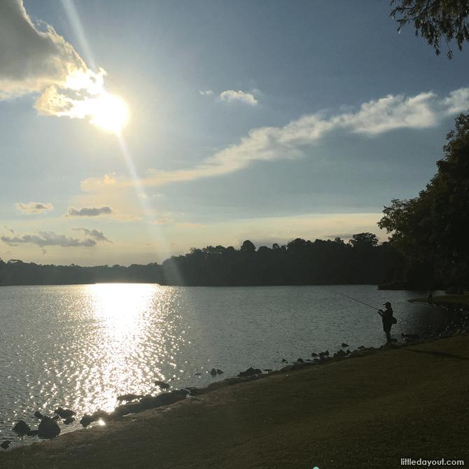 Sunset at Lower Peirce Reservoir Park