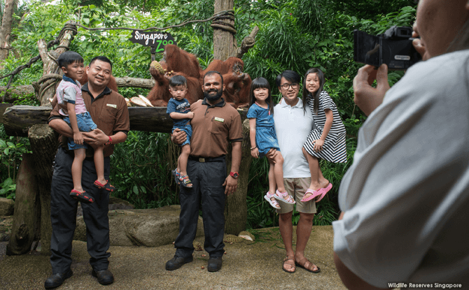 Taking photos with orang-utans at Singapore Zoo's 44th Birthday Celebration