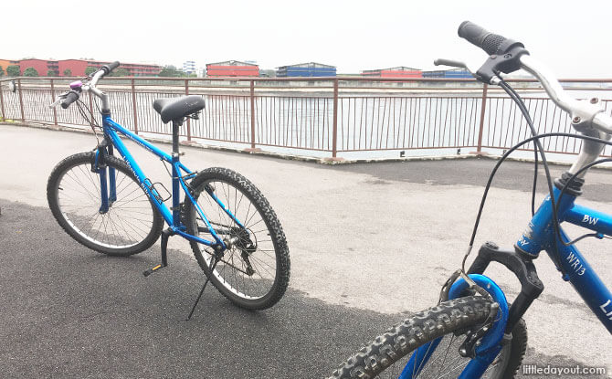 Punggol Cycling Route: A Tour Through Different Landscapes