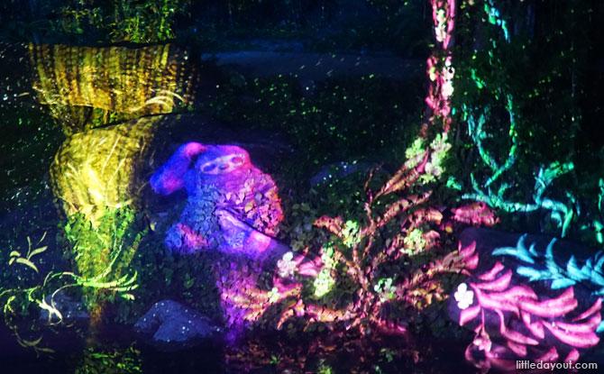 Rainforest Lumina, Singapore Zoo