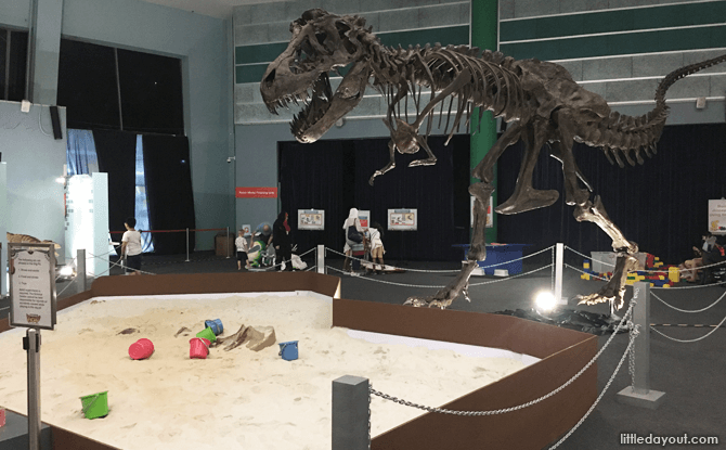 Sand Pit at Robot Dino Factory