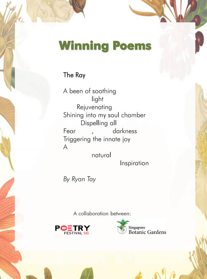 The Ray - Poem by Ryan Tay
