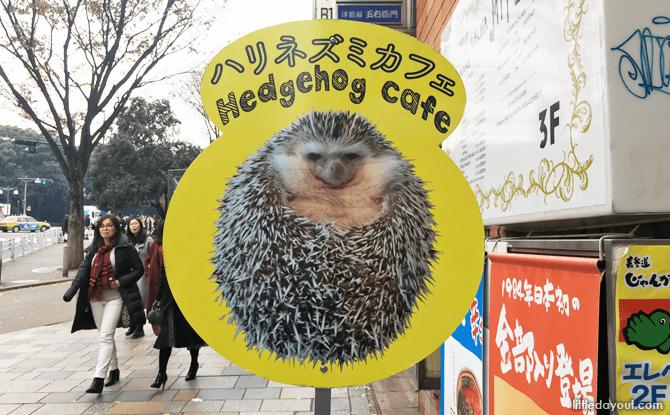 Hedgehog Cafe Street Sign