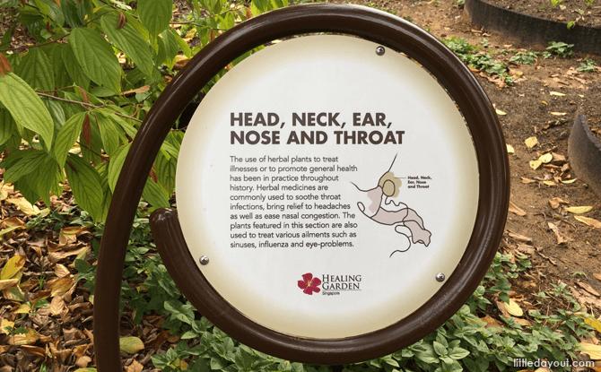 Signboard at Healing Garden at Singapore Botanic Gardens