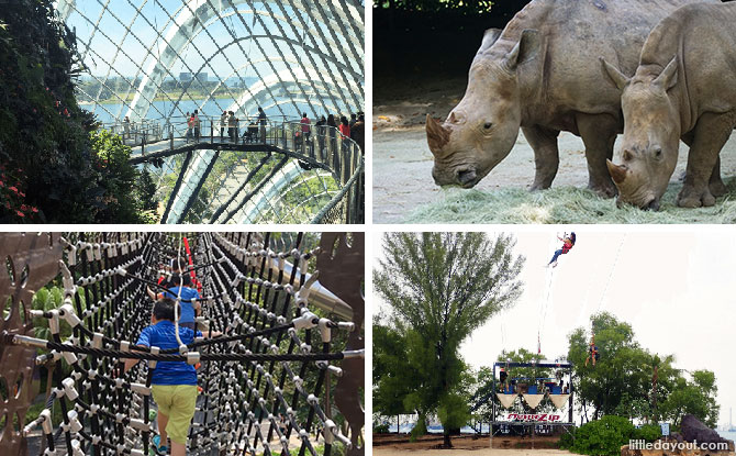 Where To Use Your $100 SingapoRediscover Vouchers: Attractions, Staycations & Tours