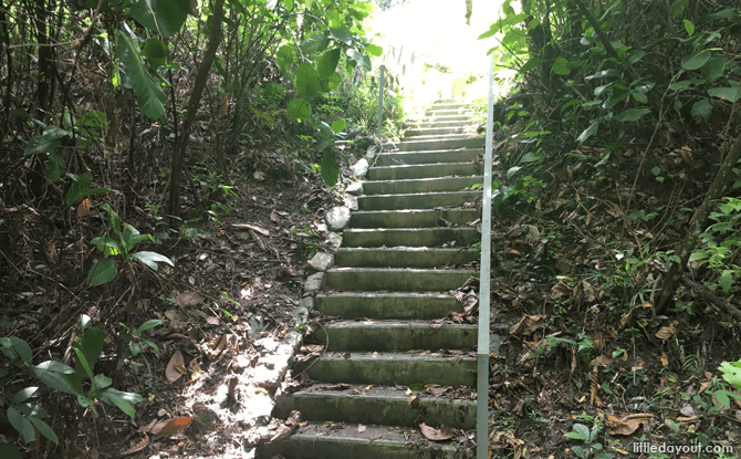 Stairs along the Earth Trail