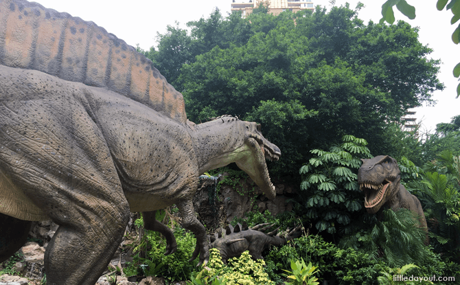 Stars of Dino, Bangkok