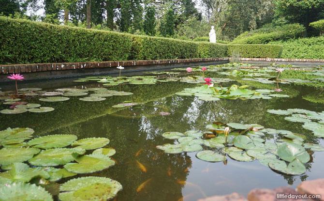Ponds at Sundial Garden