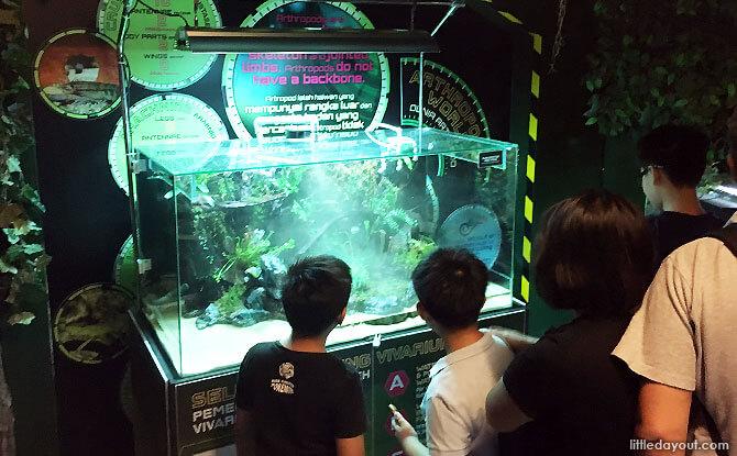 Exploring at tank at AquariaKLCC's Station Aquarius