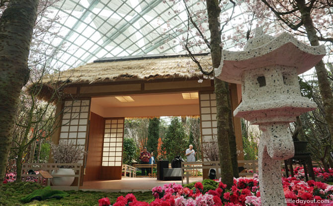 Traditional Japanese Tea House at the Flower Field