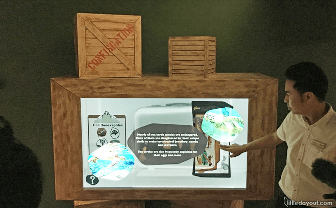 Touch Screen at RepTopia