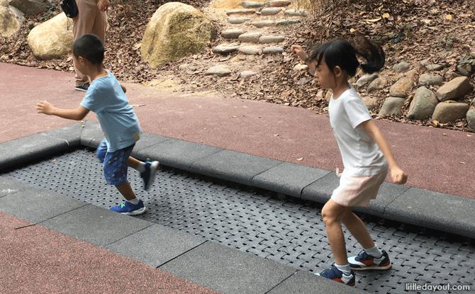 Forest Trampoline, Jacob Ballas Children's Garden Extension