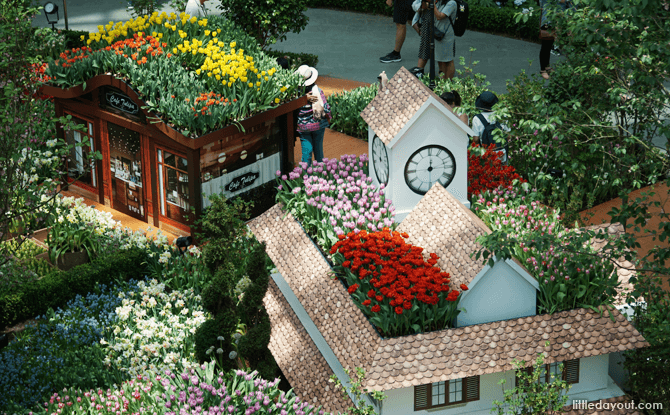 Tulipmania Display at Flower Field, Flower Dome