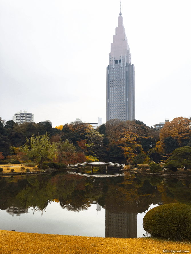 Lake at Shinjuku Gyoen National Garden